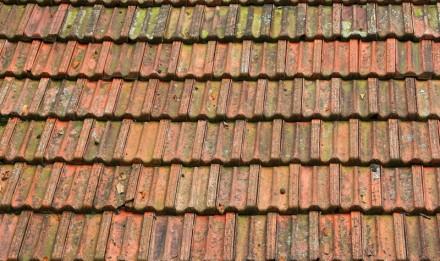 Terracotta Tile Cleaner
