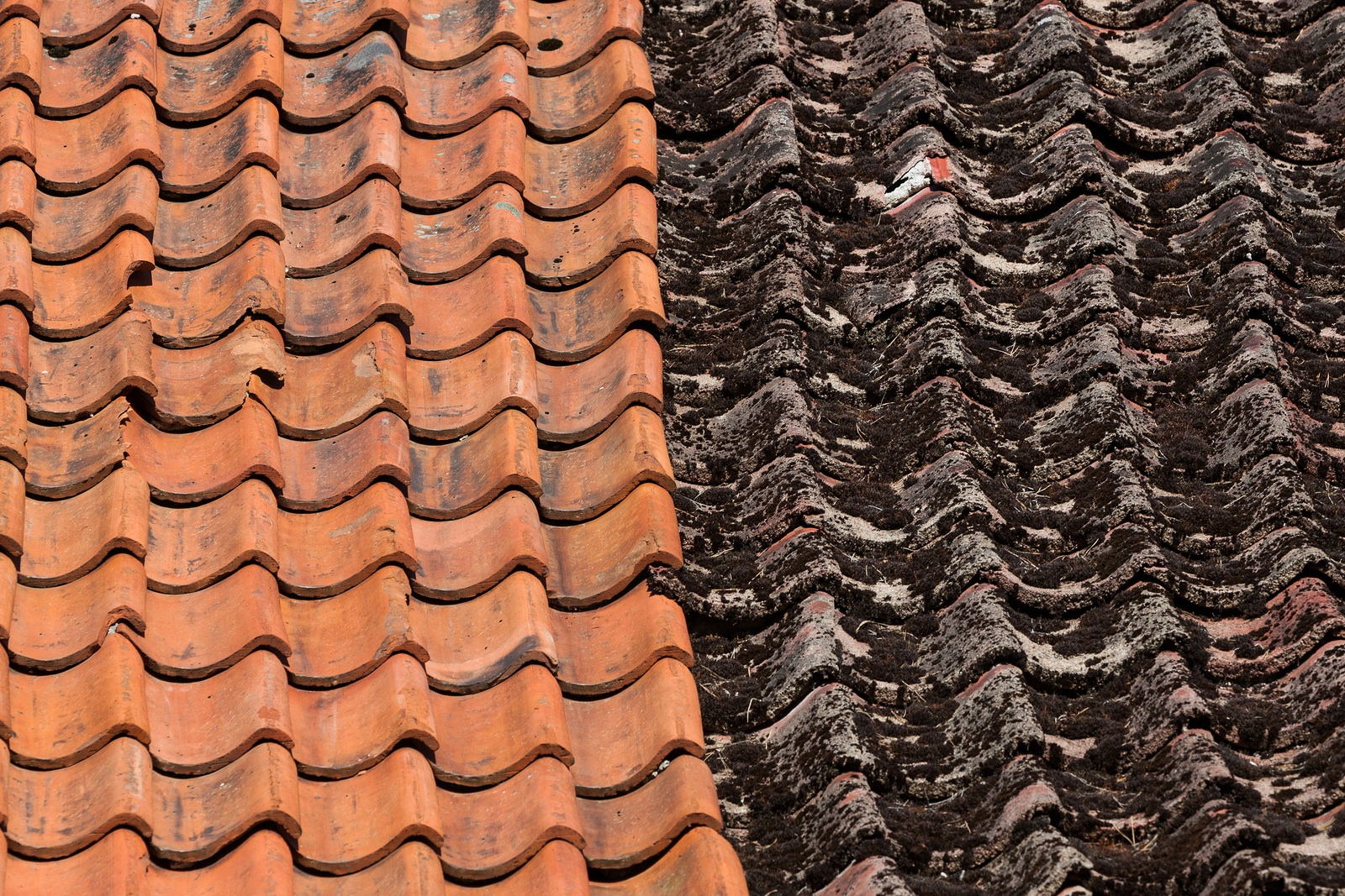 Terracotta Roof Tile Cleaning